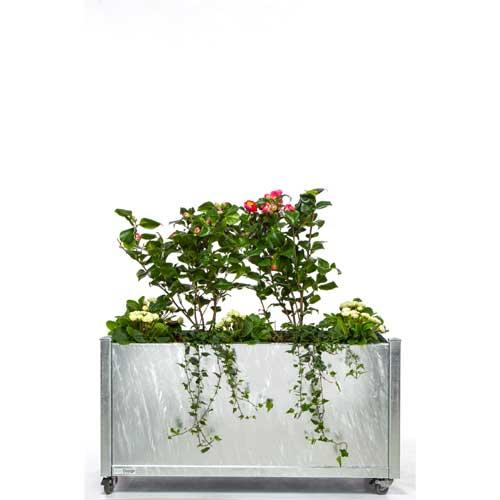 Blomsterkasse