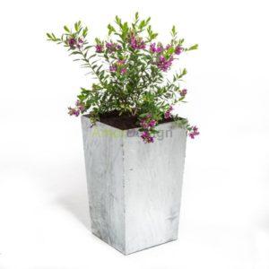 krukke galvaniseret med blomst
