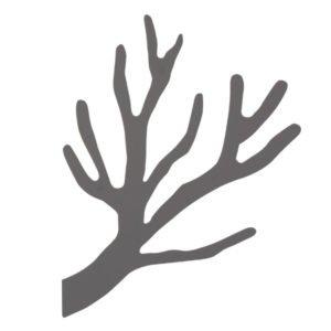 Knag kvist TøjTræet