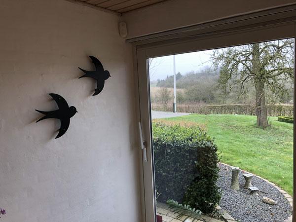 fugle flyver